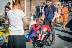 Spiderman brocante 2018 (12)